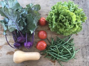 Split Acre Farm Produce North Carolina