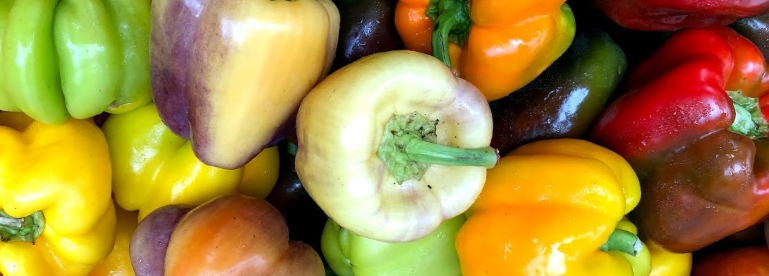 Parker_Farms_sweet_peppers_CDFM