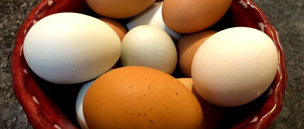 Bowl of multi-colored eggs on Cary Farmers Market website